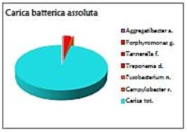 referto-esempio-01-grafico-02